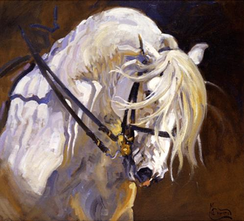 Andalusian Stallion Print by Malcom Coward