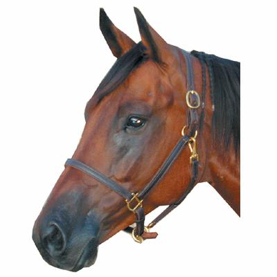Deluxe Leather Track Halter 3/4""