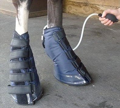 Equomed Lumark Hoof Compression Boot
