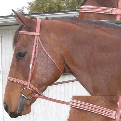 Exselle® Double Square Raised Bridle