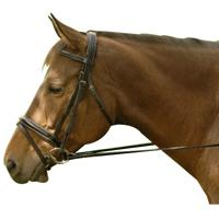 Exselle® Elite Dressage Bridle