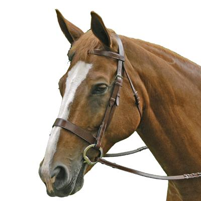 Exselle® Elite Traditional Fox Hunt Bridle