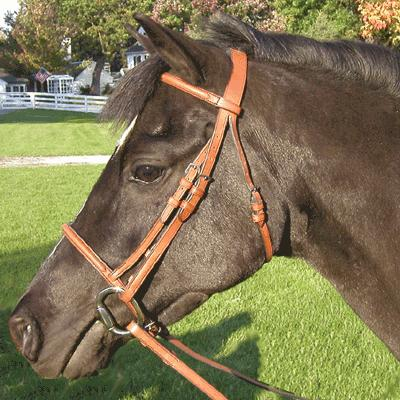 Exselle® Plain Raised Pony Bridle