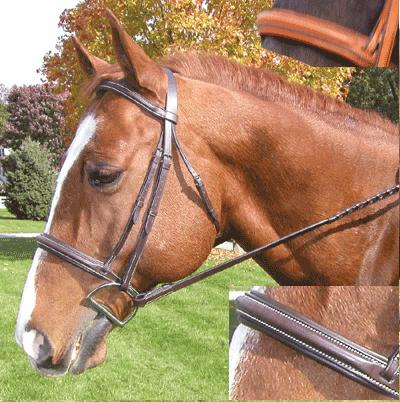 Exselle® Raised Padded Bridle