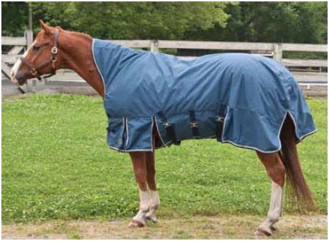 KoziMax Mid Neck Turnout Blanket