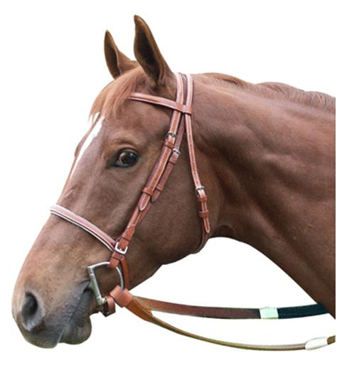 Leather Racing Bridle