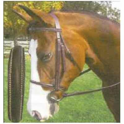 Legacy Plain Raised Work Bridle