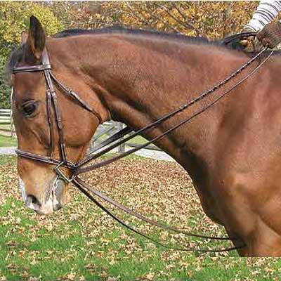 Legacy Premium Leather Draw Reins