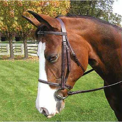 Legacy Premium Plain Raised Bridle