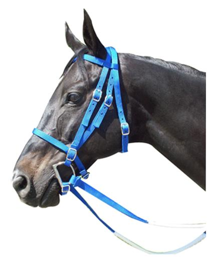 Nylon Racing Bridle