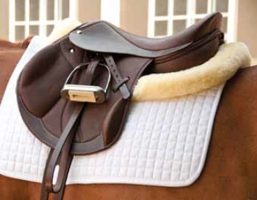 Dynamic Mono Flap Jumping Saddle