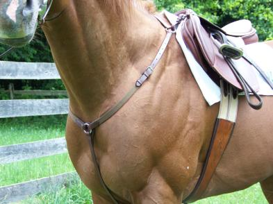 Pro-Trainer® Elastic Thin Breastplate