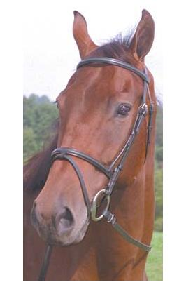 Pro-Am® Raised Snaffle Bridle w/Flash