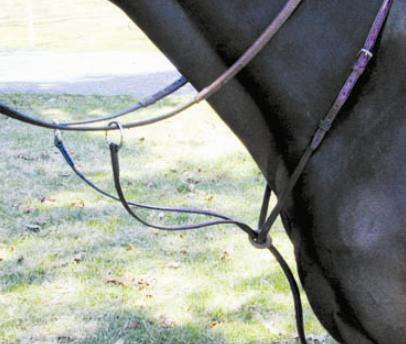 Pro-Trainer® Raised Running Martingale