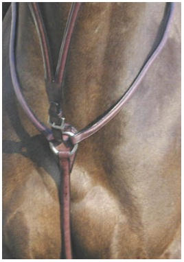 ProTrainer Raised Breastplate
